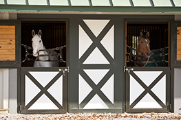 Miller & Associates' CEM quarantine is unique to any other in that it provides exceptional individualized care for each mare.